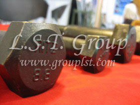 L.S.T. Group in ICS 2010 (Industrial Components & Subcontracting)